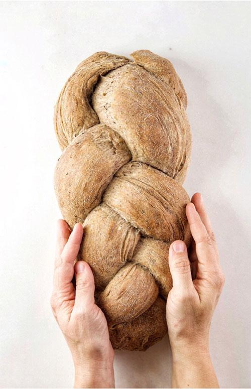 Il Pan di Molche